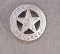 Deluxe Texas Ranger Badge.